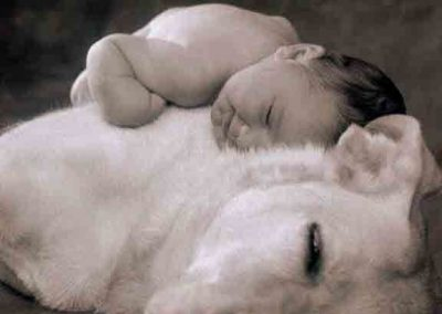 I've Learned That Having a Child Fall Asleep in Your Arms Is One of the Most Peaceful Feelings in the World