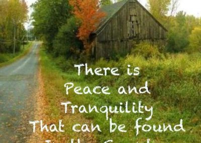 There IS Peace and Tranquility That Can Be Found in the Country